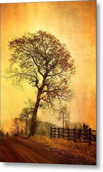 The Morning Tree Metal Print