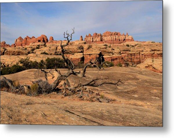 The Needles At Canyonlands National Park Metal Print