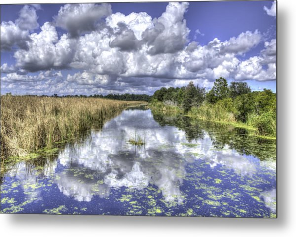 The Old Rice Fields Metal Print