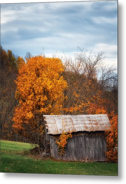 The Old Shed In Fall Metal Print