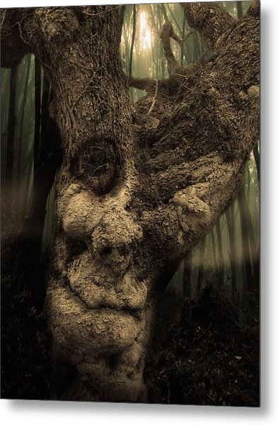 The Old Treant Metal Print