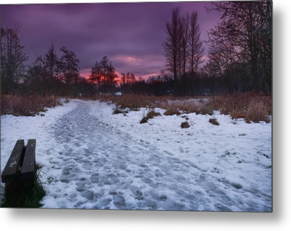 The Path By Dusk Metal Print