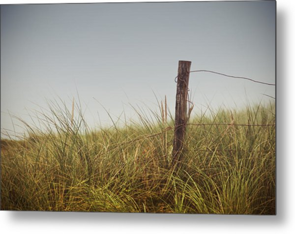 The Path To The Beach Metal Print
