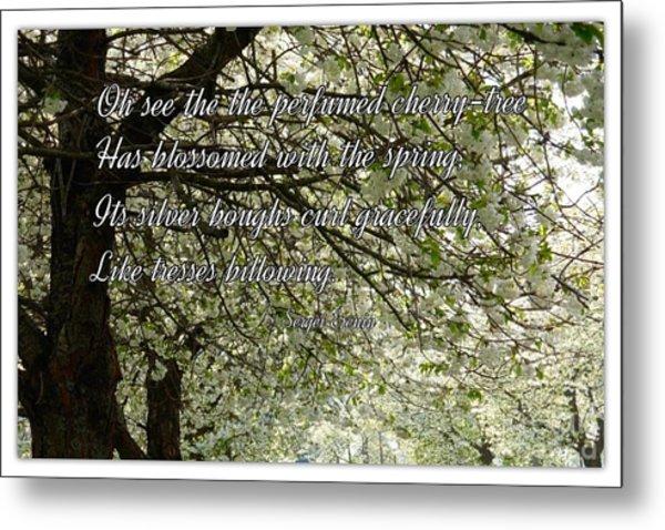 The Perfumed Cherry Tree 1 Metal Print