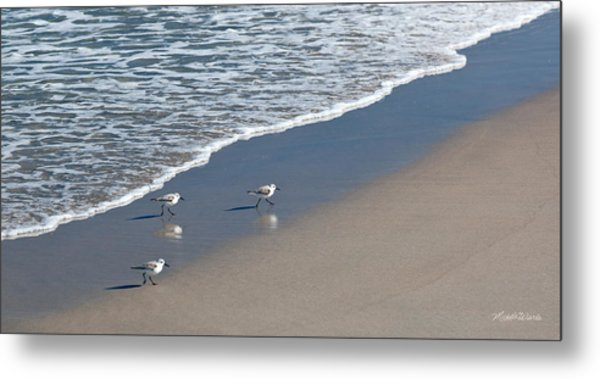 The Pied Sandpiper Metal Print