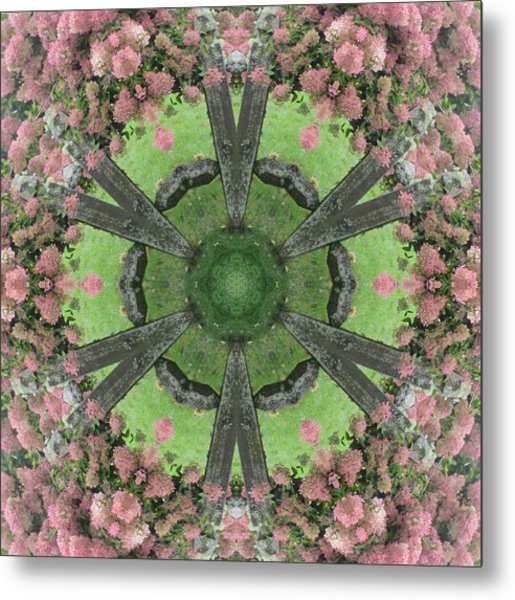 The Pink Hydrangea Metal Print