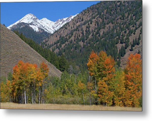 The Pioneer Mountains Near Sun Valley Metal Print