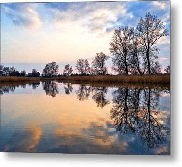 Ponds In Lomna Metal Print