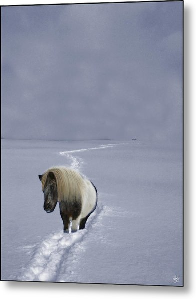 The Ponys Trail Metal Print