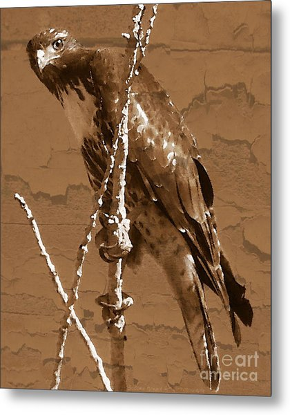 The Predator Digital Painting Metal Print
