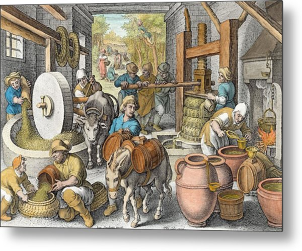 The Production Of Olive Oil, Plate 13 Metal Print