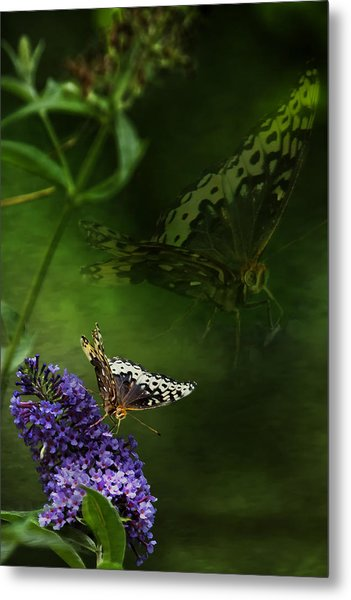 Metal Print featuring the photograph The Psyche by Belinda Greb
