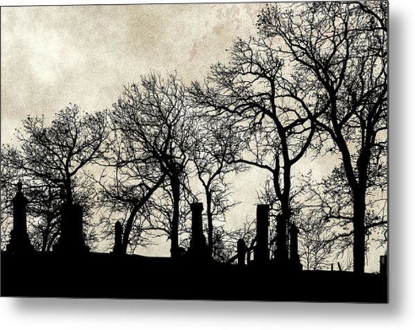 The Quiet Place Metal Print