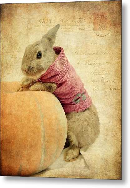 The Rabbit And The Pumpkin Metal Print