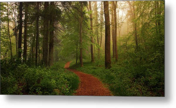 The Red Path. Metal Print
