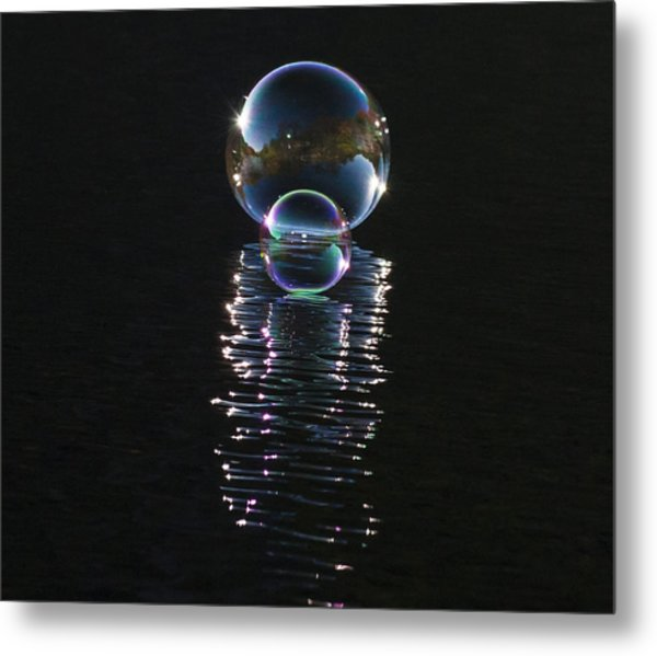 The Reflection  Metal Print