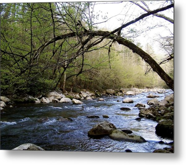 The River Runs Metal Print by Kimberly Elliott
