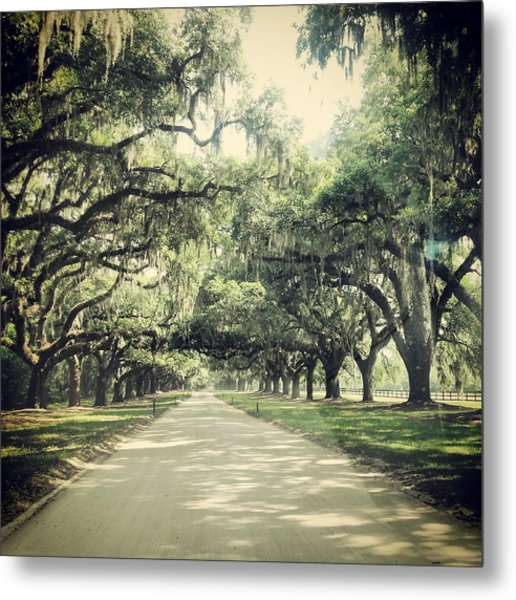 The Road From Boone Hall Metal Print