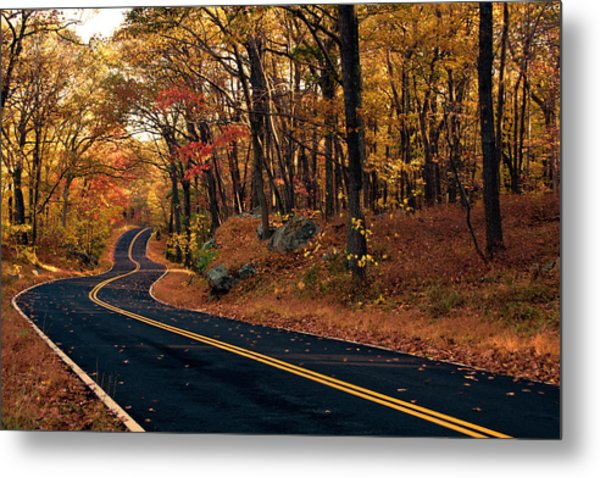 The Road Into Autumn Metal Print by Zev Steinhardt