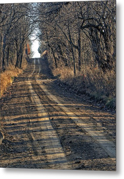 The Road Less Traveled Metal Print by Kevin Anderson