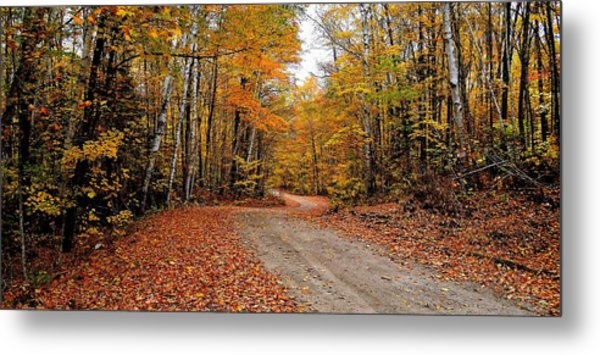 The Road We Take Metal Print