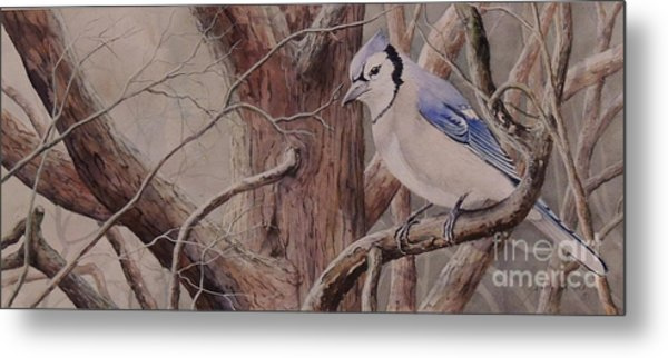 The Roost Sold Metal Print