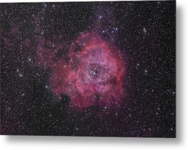 The Rosette Nebula Metal Print by Brian Peterson
