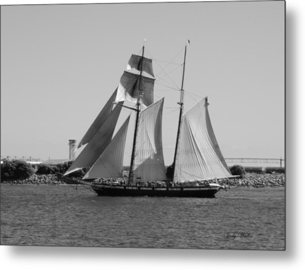 The Sails Metal Print by Judy  Waller