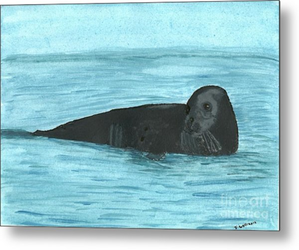 The Seal Metal Print