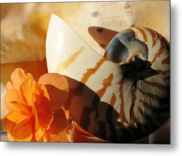 The Secret Of The Sea Metal Print