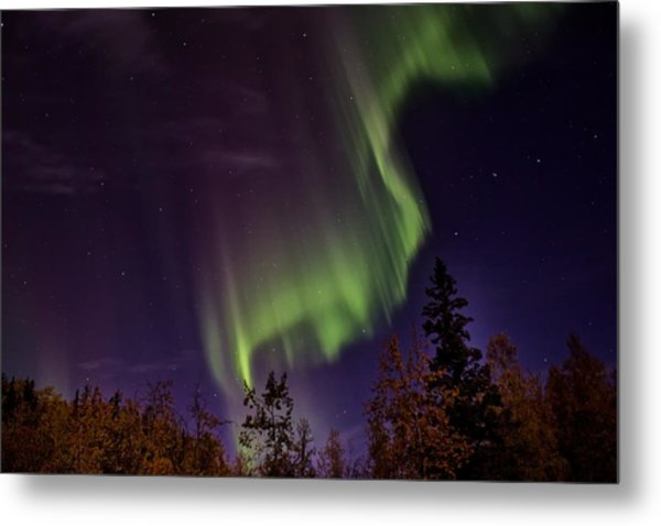 The September Aurora Fairbanks Alaska Metal Print