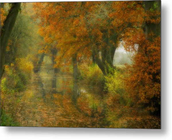 The Shire Metal Print