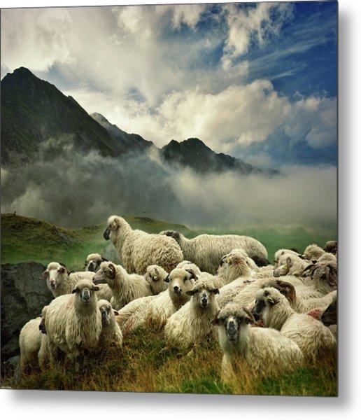 The Silence Of The Lambs Metal Print