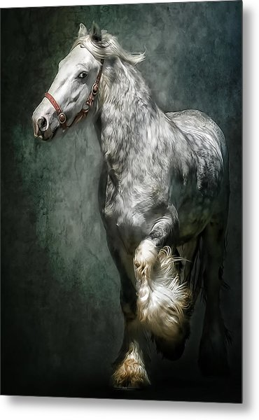 The Silver Gypsy Metal Print