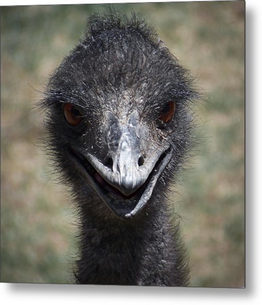 The Smile Metal Print