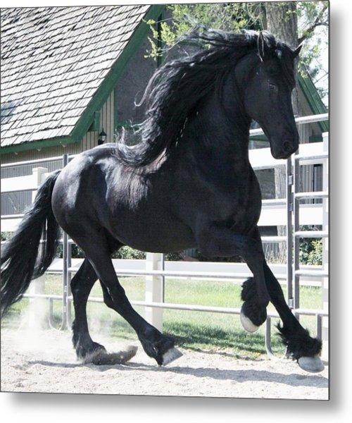 The Spirit Of The Friesian Metal Print
