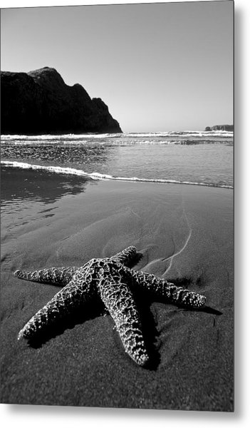 The Starfish Metal Print