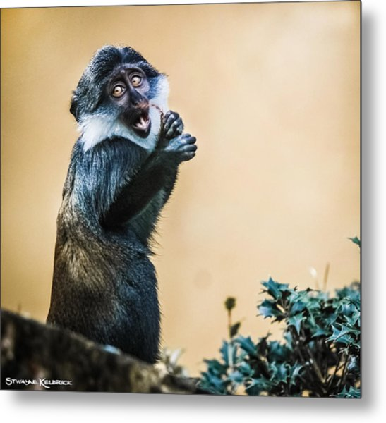 The Starving Ape Metal Print