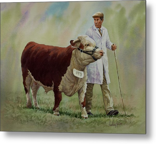 The Stockman And Bull Metal Print by Anthony Forster