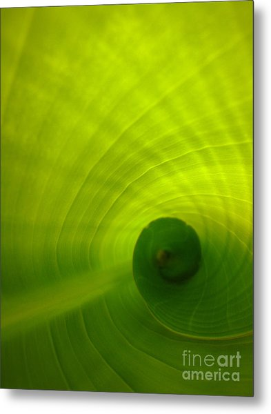 The Swirl Metal Print