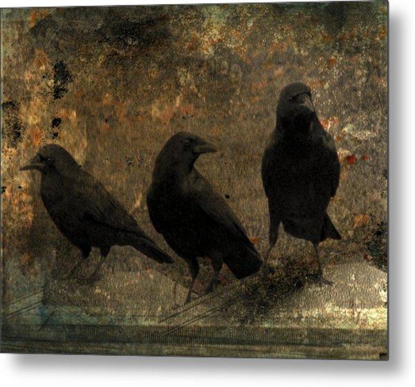 The Three Black Crows Metal Print