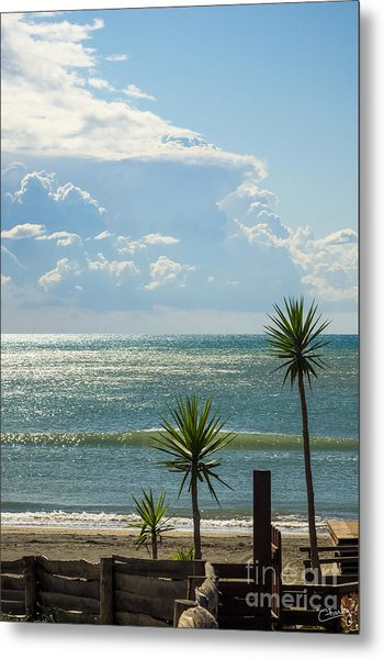 The Three Palms Metal Print