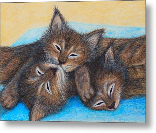 The Three Zzz Metal Print
