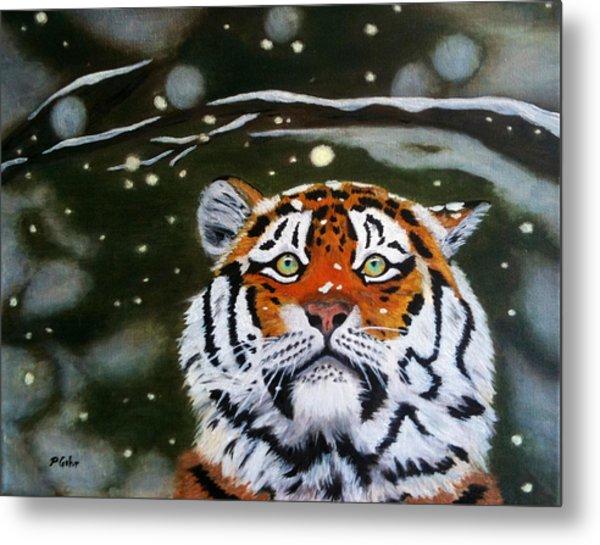 The Tiger In Winter Metal Print