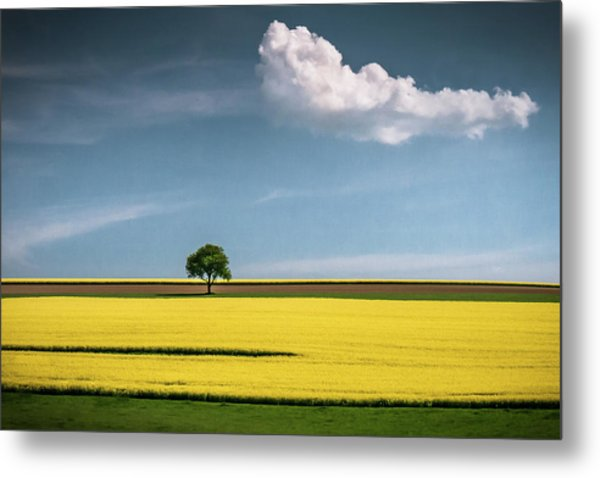 The Tree And The Cloud Metal Print