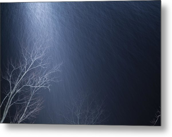 The Tree Under The Snowfall Metal Print
