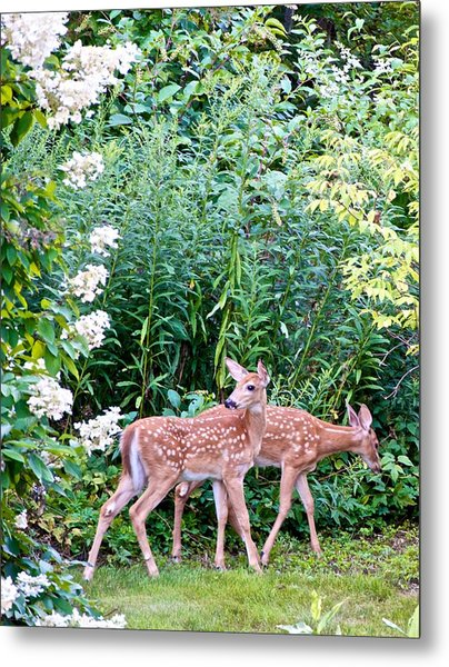 The Twins On The Move Metal Print