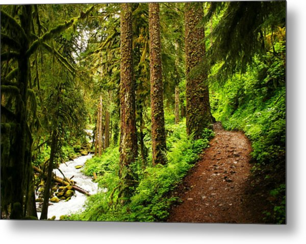 The Twisting Path Winding Through Paradise  Metal Print