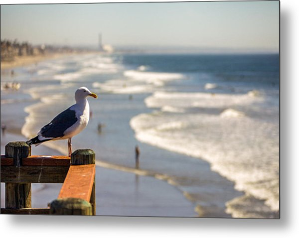 The View Point Metal Print