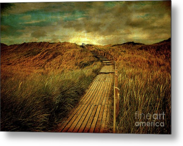 The Way Metal Print